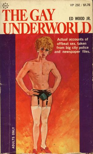Adult Gay Fiction 33